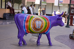 Cow Parade Lala Tijuana 2008