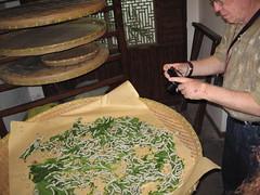 China-0853