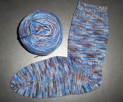 Sanguine Gryphon Sock - Pythagoras