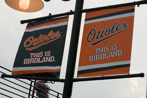 Camden Yards - A Place for Birds
