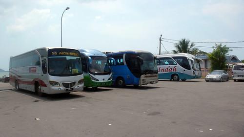 og busses