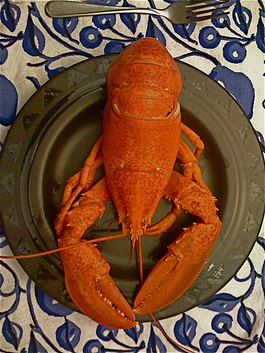Lobster on a Plate with Fork