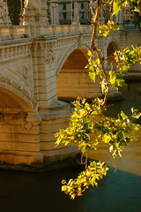 Roman light (victoria0805) Tags: bridge light italy rome water leaves nikond40 flickrelite goldstaraward qualitypixels