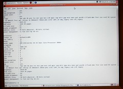 Running Ubuntu Live (before hard disks installed)