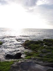 Tanah Lot (taichinakatani) Tags: bali tanahlot