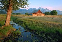 Summer Morning Light (Jeff Clow) Tags: soe grandtetonnationalpark mormonrow jacksonholewyoming moultonbarn abigfave anawesomeshot goldstaraward jeffrclow