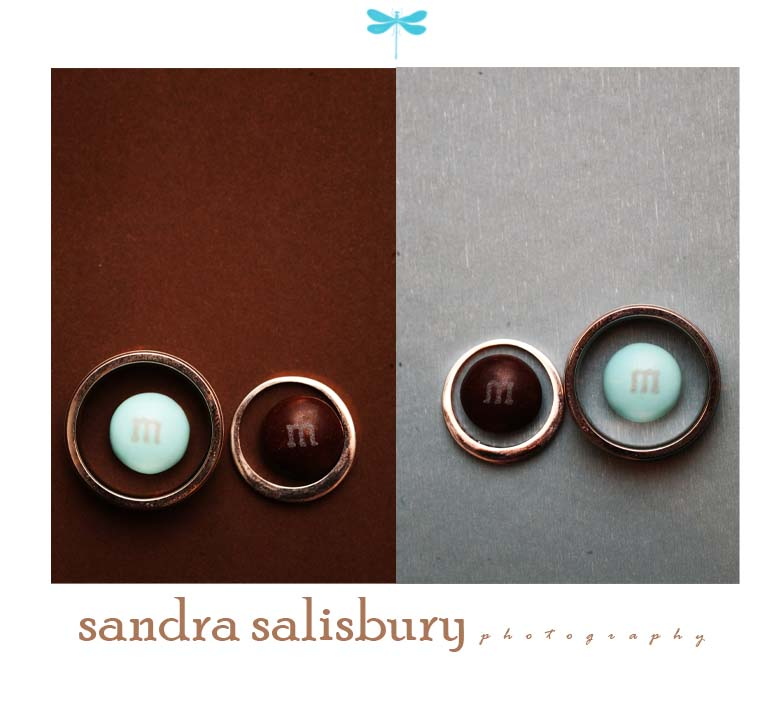 sandrasalisbury photography ring shot
