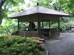 CIMG0722 (zgware) Tags: japan tokyo kyoto tea