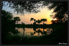 Sunset in Keoladeo National Park (Bhanu Devgan) Tags: mywinners rubyphotographer