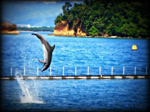 Viaje sin gastar mucho en el Caribe