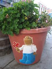 Plastic flower (dschweisguth) Tags: sanfrancisco homer foundinsf