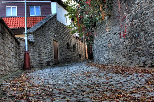 Cobblestones in the Fall