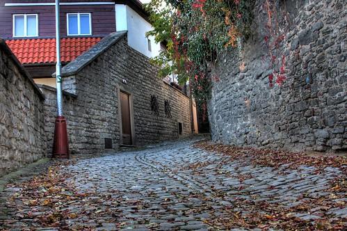 Cobblestones in the Fall