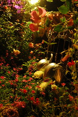 this twilight garden ... Halloween Thanksgiving, Mill Rose Inn, Half Moon Bay, California, USA (Wonderlane) Tags: california thanksgiving ca flowers gay wedding roses party usa color art halloween fairytale garden pumpkin relax happy this hotel coast us dance twilight inn pretty unitedstates fat magic events fineart great rich jardin parties location full rico flowerbed artnouveau pacificocean sanfranciscobayarea romantic cinderella weddings charming patch bb bedbreakfast bedandbreakfast quaint magical halfmoonbay phat happyhalloween californian mavericks 4500 bnb bythesea wonderlane millroseinn bedofflowers thistwilightgarden pumpkinsinthegarden themagicalgreatpumpkinpatch httpwwwmillroseinncom artnouveaustyleinn millroseinnathalfmoonbay agreatplacetogetmarried