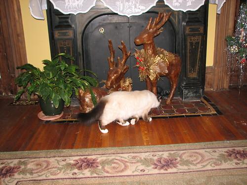 fireplace deer