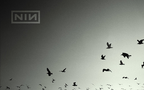 Nine Inch Nails Wallpapers Hd Imágenes Taringa