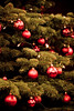 Green and Red (flaimo) Tags: christmas xmas red tree verde green rot natal weihnachten linz rouge eos austria oostenrijk österreich rojo groen christmastree vert boom vermelho ornaments christmasballs árbol grün noël albero natale rood rosso arbre árvore 緑 크리스마스 oberösterreich クリスマス 树 kerstmis 红色 70200mm lanavidad 圣诞节 klosterhof upperaustria christbaum 奥地利 나무 オーストリア 绿色 австрия áustria красно рождество 赤い 빨간 오스트리아 녹색 вал 400d δέντρο rebelxti зеленыйцвет χριστούγεννα landstrase lautriche αυστρία laustria κόκκινοσ πράσινοσ osm:node=280854013 foursquare:venue=532267
