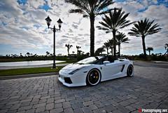 Lamborghini Gallardo Spyder TT (F1Photography.net) Tags: black toy mercedes benz nikon chat play martin bs 10 4 rally wheels twin sigma 360 f1 ferrari 63 turbo porsche 200 tots cs series tt 20 nikkor 18 daytona m3 audi 2008 cor luxury mb forged vr maserati aston qp gallardo stradale f430 gtb roadster murcielago r8 clk db9 gt3 hre rsc 355 599 heffner fiorano d90 lp640 l4p gatorun lp560 lp5604