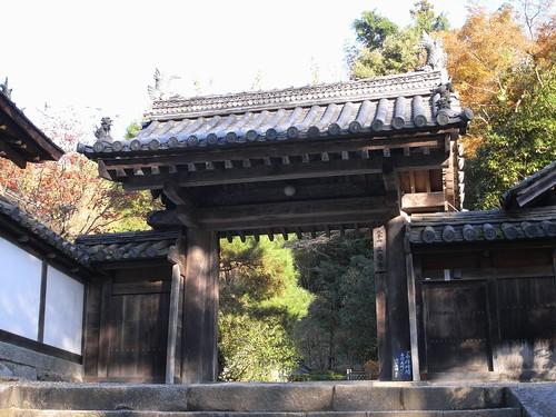 正暦寺(2008紅葉)-15