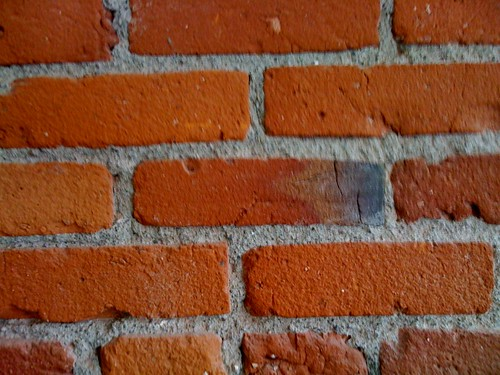 Bricks on the Mindfly wall