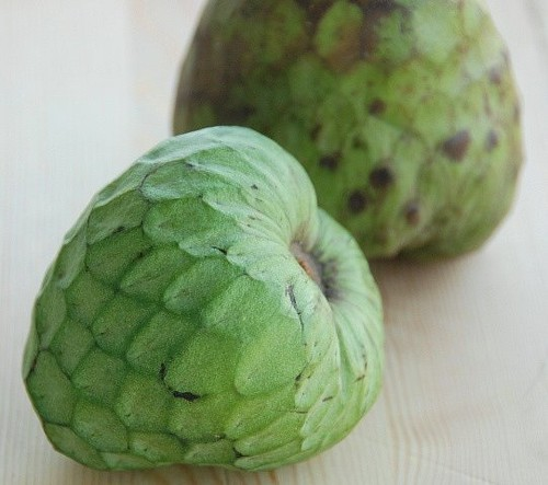 cherimoya fruit are olives a fruit