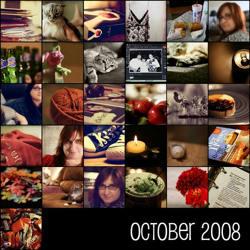 October 2008  [project 365]