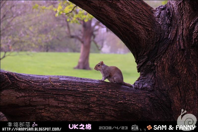Blog_UK_0108.jpg