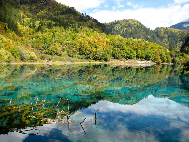 Translucent Lake