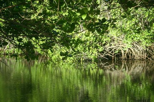 Sumilon lagoon