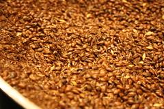 Roasted Barley (derekbruff) Tags: dublin barley guinness roasted