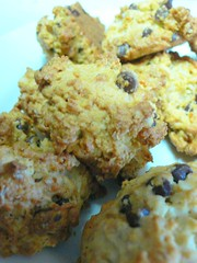 chocolate-chip cookie
