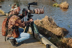 Canadian photographers in the wild - 04