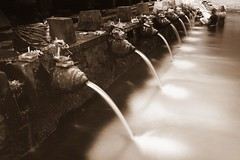 spouts (Farl) Tags: longexposure travel bali sepia indonesia prayer sacred bathe waters ritual bathing spout spiritual hinduism tirta empul uncropped spouts offerings purification cleansing ndfilter canang gianyar tampaksiring tirtaempul