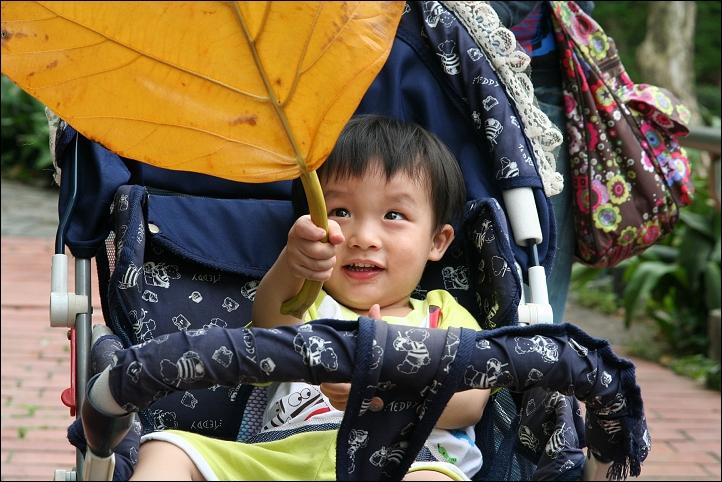 兒童樂園之明日世界129