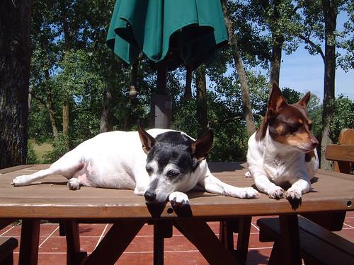 2008-06-20 - Kaylee & O-Ren - 0006
