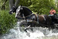 lz190504(54) (Lothar Lenz) Tags: deutschland friese pilcher 56812dohr