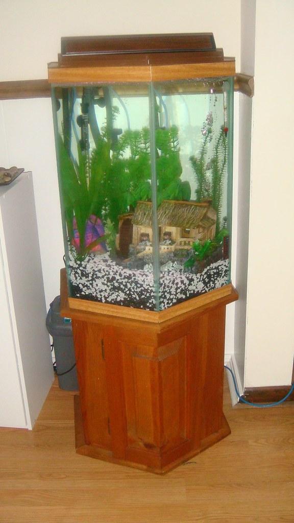 100 Gallon Octagon Fish Tank 55 Gal Hexagon