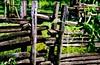 =!!= (Edison Zanatto) Tags: brazil naturaleza southamerica nature brasil natureza natur cerca nikonn90s americadosul südamerika fujicolorprovalue200 filme35mm continentesulamericano edisonzanatto