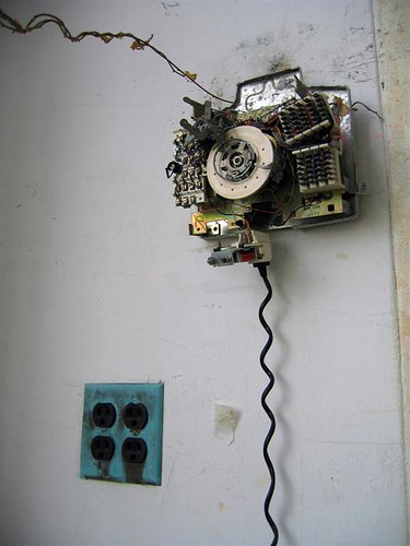 A vine attempting to rotary dial