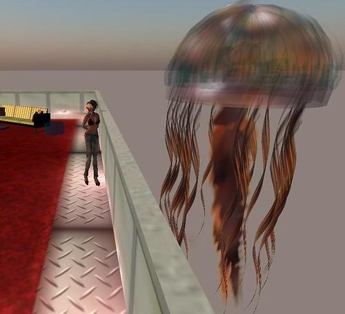 jellyfish heaven