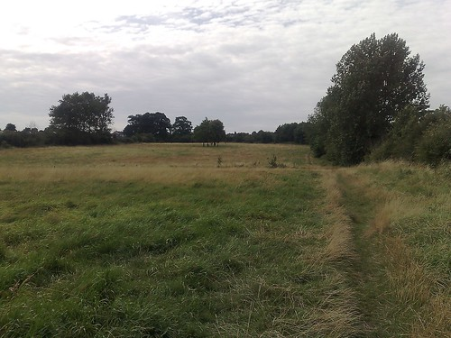 The fields and woods around Ware
