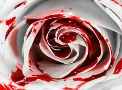 bleeding rose by theresonlyone17.