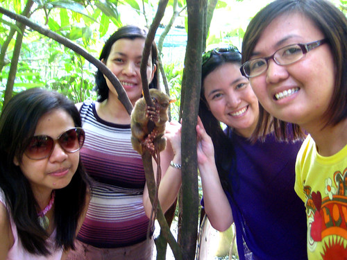The Tarsier and Us