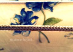 oh it's what you do to me (tina[inwonderland]) Tags: flowers blue art set nokia flickr arte image song blu tag pic rope calm explore genoa genova fotografia fiori calma immagine corda plainwhitets canzone heytheredelilah n958gb tinainwonderland valentuba