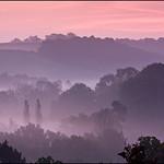 Winkworth Dawn