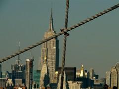 View from the Brooklyn Bridge (urbanshoregirl) Tags: nyc newyorkcity sunday gothamist brownstoner 101208