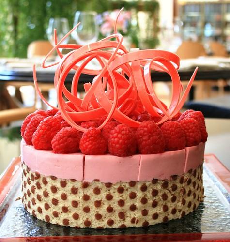 Raspberry Yogurt Mousse Cake