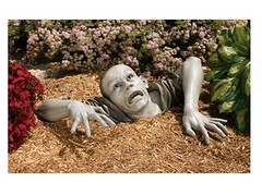 Zombie of Montclaire Moors