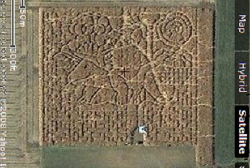 Heartland Country Corn Field Maze