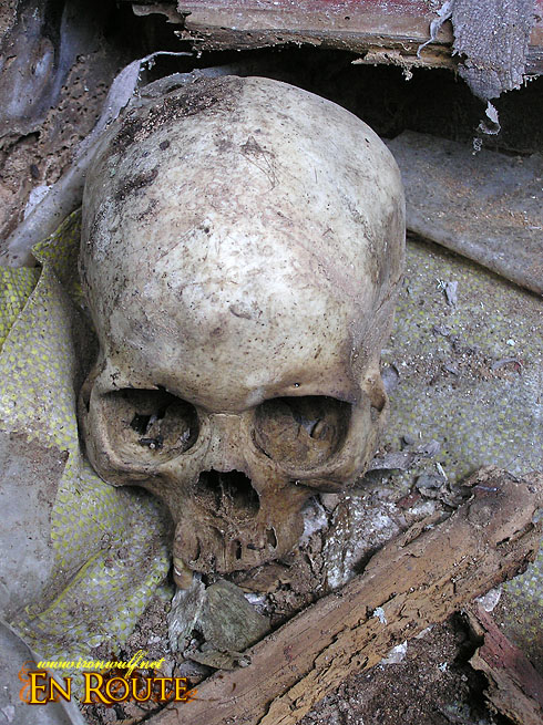 A skull at one of the Burial Caves